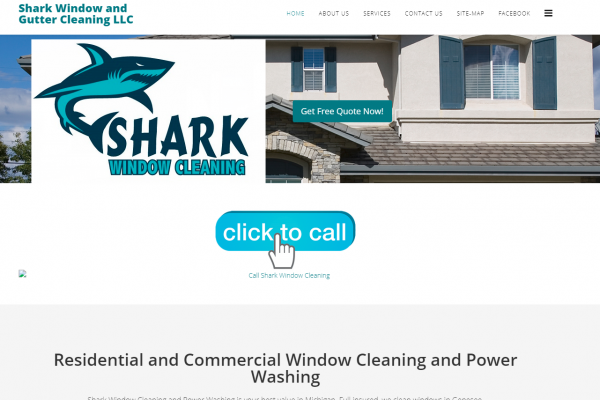 Shark Window Cleaning